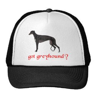 GOT GREYHOUND TRUCKER HATS