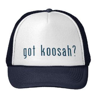 got koosah mesh hat