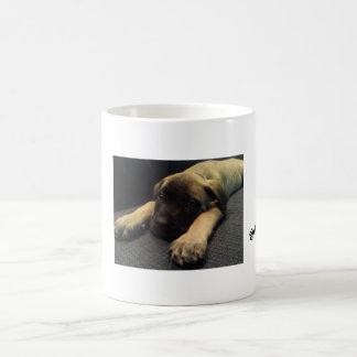 got mastiff? classic white coffee mug