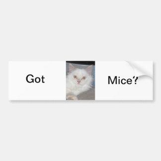 Got Mice? Bumper Sticker