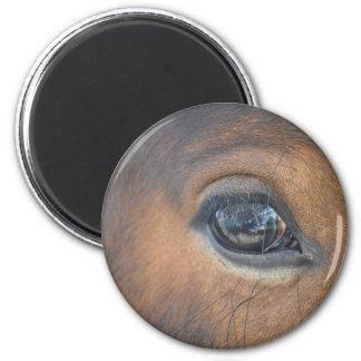 Got My Eye On You 6 Cm Round Magnet