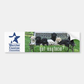 Got Oxytocin?  Bumper Sticker
