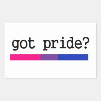 Got Pride? Bisexual Bi Pride Sticker