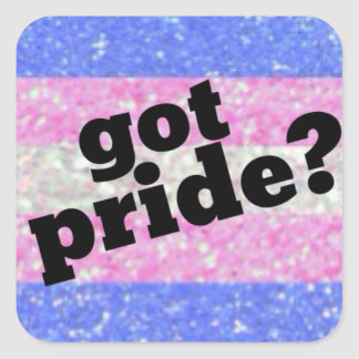 Got Pride? Transgender pride sticker