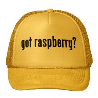 got raspberry? cap