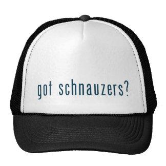 got schnauzers hat
