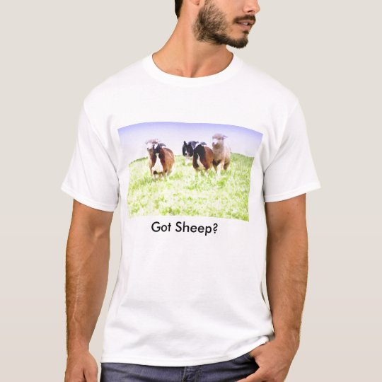Got Sheep? Border Collie T Shirt