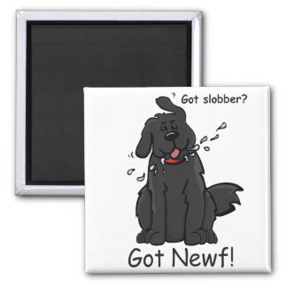 Got Slobber - Got Newf! Magnet