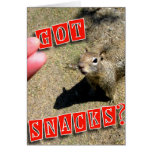 Got Snacks? cute squirrel funny greeting card gift