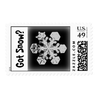 Got Snow? 3 Stamp