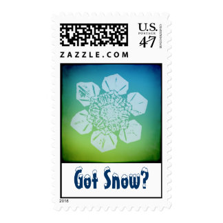 Got Snow? 5 Stamp