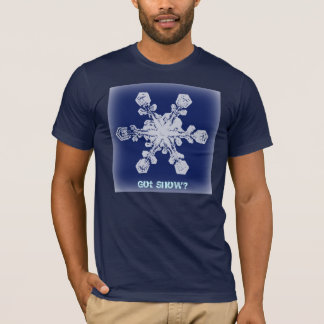 Got Snow? 9 Tshirt