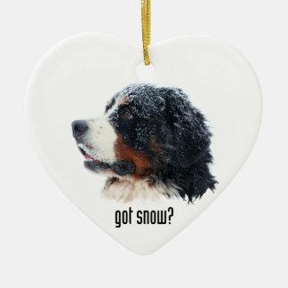got snow? Bernese Mountain Dog Christmas Ornament