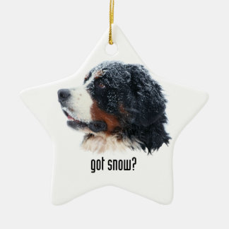 got snow? Bernese Mountain Dog Christmas Ornament