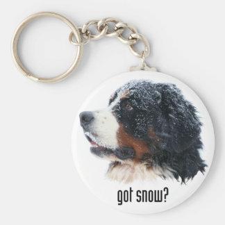 got snow? Bernese Mountain Dog Key Ring