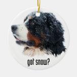 got snow? Bernese Mountain Dog Round Ceramic Decoration