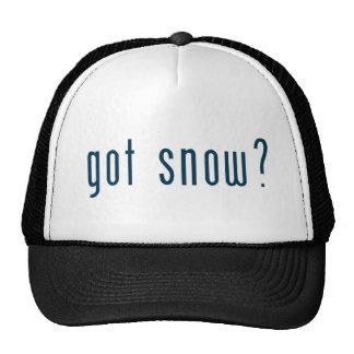 got snow trucker hat