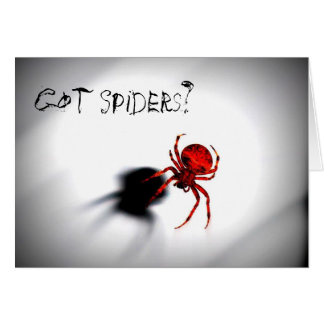 Got Spiders? Halloween greeting card