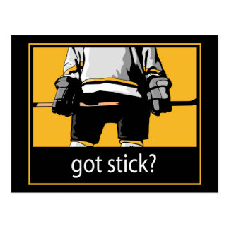 Got Stick Hockey Postcard