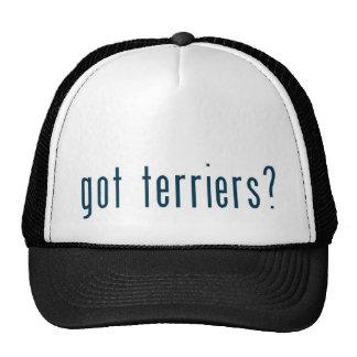 got terriers mesh hats