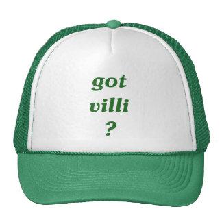 got villi? hats