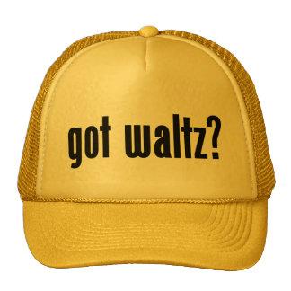got waltz? mesh hat