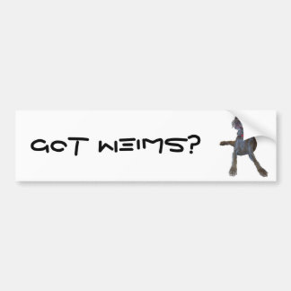 Got Weims? weimaraner bumper sticker