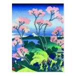 Goten-Yama Hill Cherry Blossom Fine Art Postcard