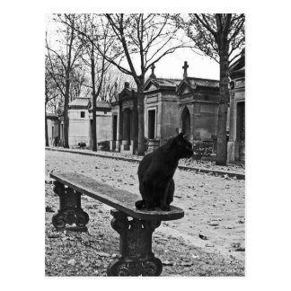Gothic Cemetery Cat postcard