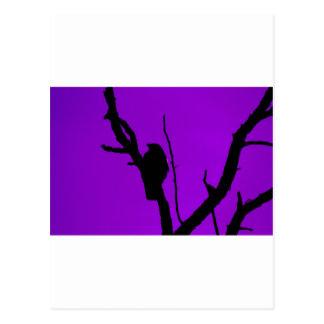 Gothic Crow on Purple Postcard