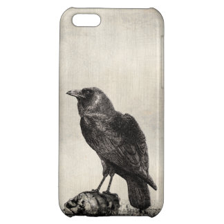 Gothic Horror Case The Raven and Skulls Case For iPhone 5C