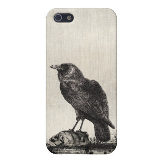 Gothic Horror The Raven and Skulls iPhone 5 Cover