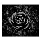 gothic rose poster