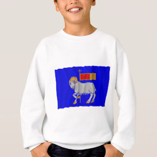 Gotlands län waving flag sweatshirt