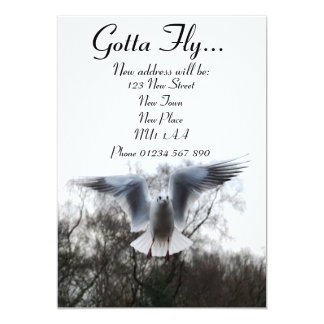 Gotta Fly - New Address Cards