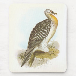 Gould - Bearded Vulture - Lammergeyer Mouse Pad