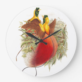 Gould Birds of Paradise Wall Clock