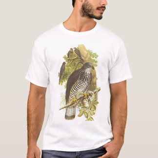 Gould - Honey Buzzard - Pernis apivorus T-Shirt