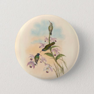Gould Hummingbirds and Orchids 6 Cm Round Badge