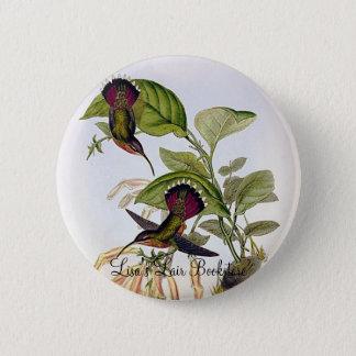 Gould - Lanceolate Hermit Hummingbird 6 Cm Round Badge