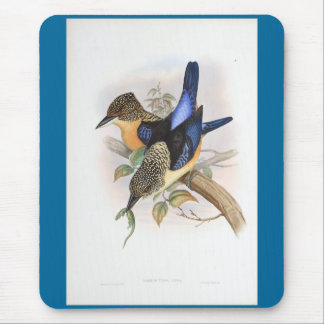 Gould - Mantled Kingfisher Mouse Pad