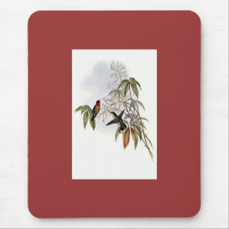 Gould - Ruby-Throated Hummingbird Mouse Pads
