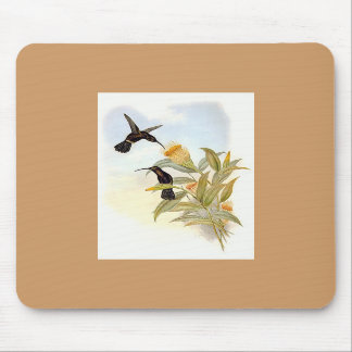 Gould - Sooty Barbed-Throat Hummingbird Mouse Mat