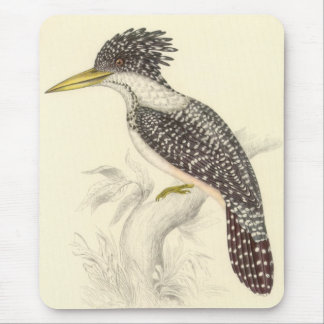Gould - Spotted Kingfisher Mouse Pad