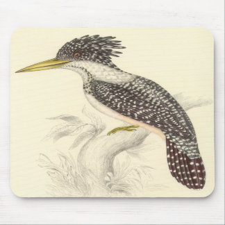 Gould - Spotted Kingfisher Mouse Pads