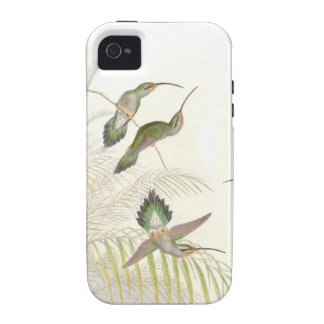 Goulds Hummingbirds Case-Mate iPhone 4 Cover