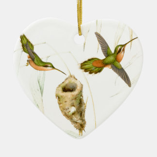 Goulds' Hummingbirds Ornament