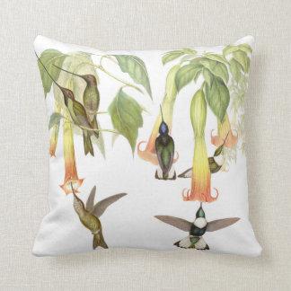 Goulds Hummingbirds Pillow