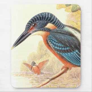 Goulds Kingfisher Bird Mousepad