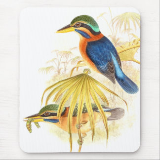 Goulds Kingfisher Birds Mouse Pad